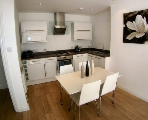 Modern kitchen in 1 bed flat Clifton